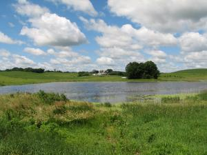 Wetland Restoration Project